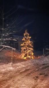 Weihnachtsbaum in Rugiswalde